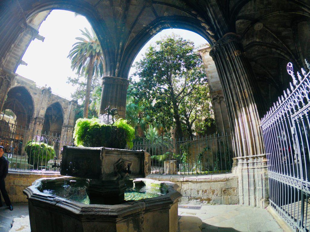 バルセロナ旧市街にあるカテドラルの中庭を観光