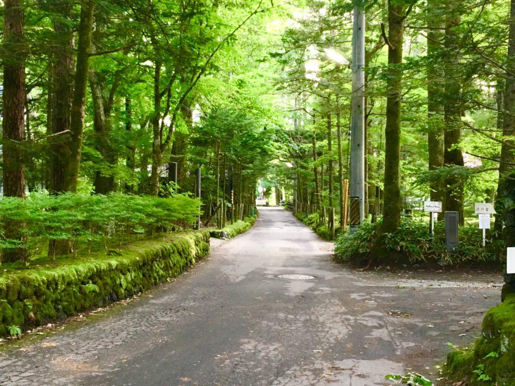 犀星の径は軽井沢サイクリングのベストロード