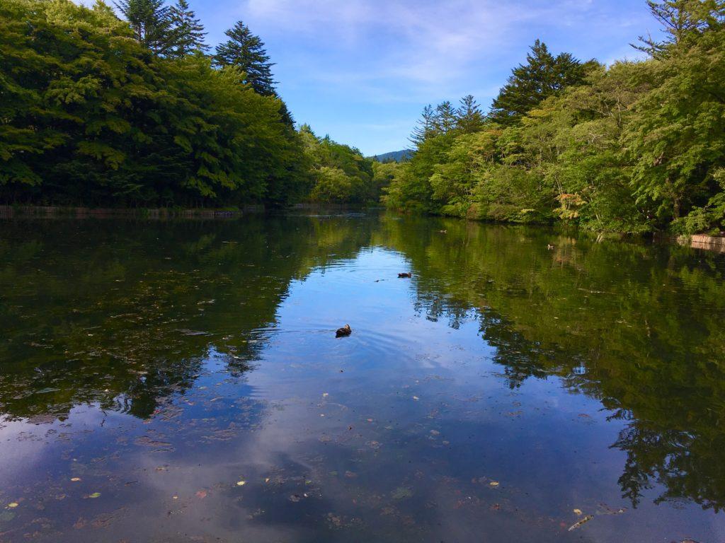 軽井沢の雲場池はサイクリングにおすすめ